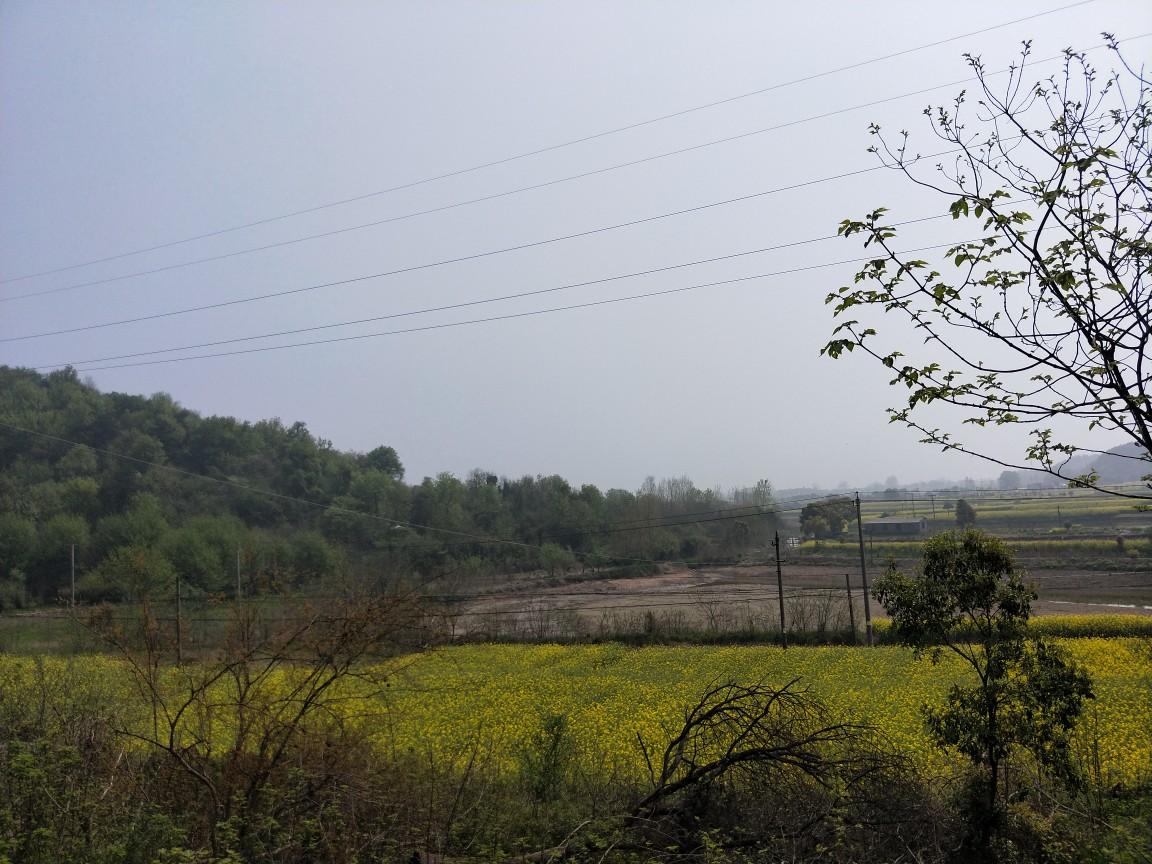 潜山到梅龙镇——自然已经换装了.