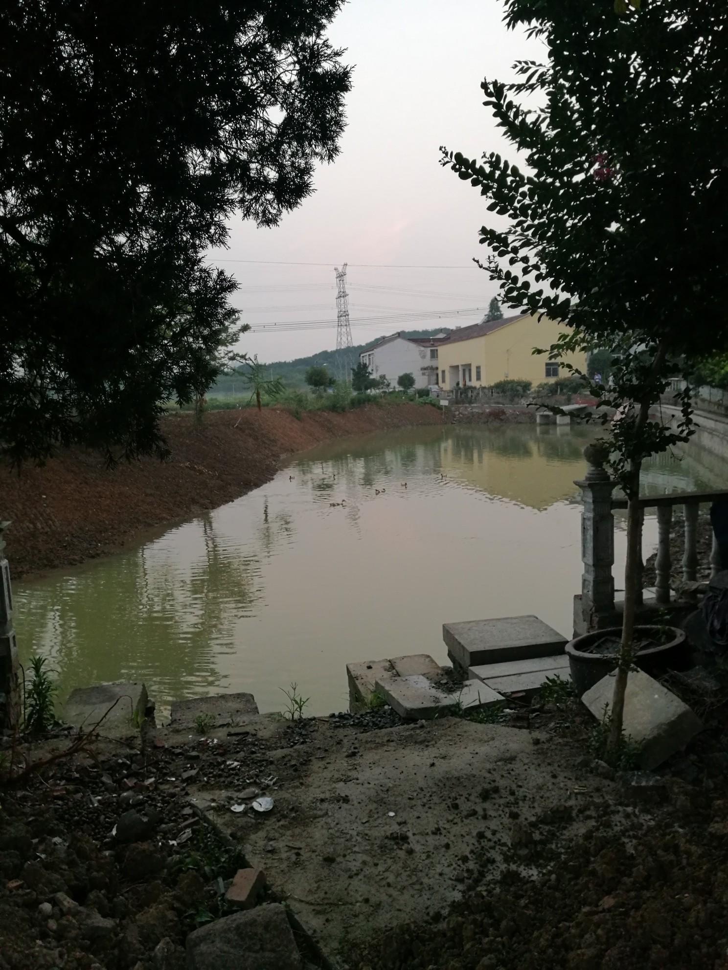 目前东屏镇鹅塘头村村中的池塘在搞雨污分流工程施工,这是政府做的一项惠及民生的工程,有利于环境的可持续发展,但是施工过程中存在一些考虑不周的地方,导致遗留了一些问题,我觉得有必要反映出来,希望上面的领导能重视起来。问题如下:既然搞雨污分流,是不是应该将所有村中污水用污水渠道将污水与雨水分隔开来,但是村最前面住的几户人家的污水,化粪池里的水并没有做雨污分流的措施,还是能顺着门口的小沟流入池塘,将问题也与村干部反应过,得到的答复是只有两三户人家,污水流入池塘不要紧,而且门口的小沟由于无人管理,导致里面的淤泥很多